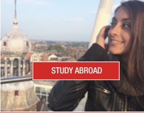 IE Study Abroad button